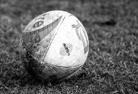 il rugby.jpg